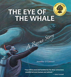 eye of whale cover seal